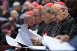 assembleia sinodo